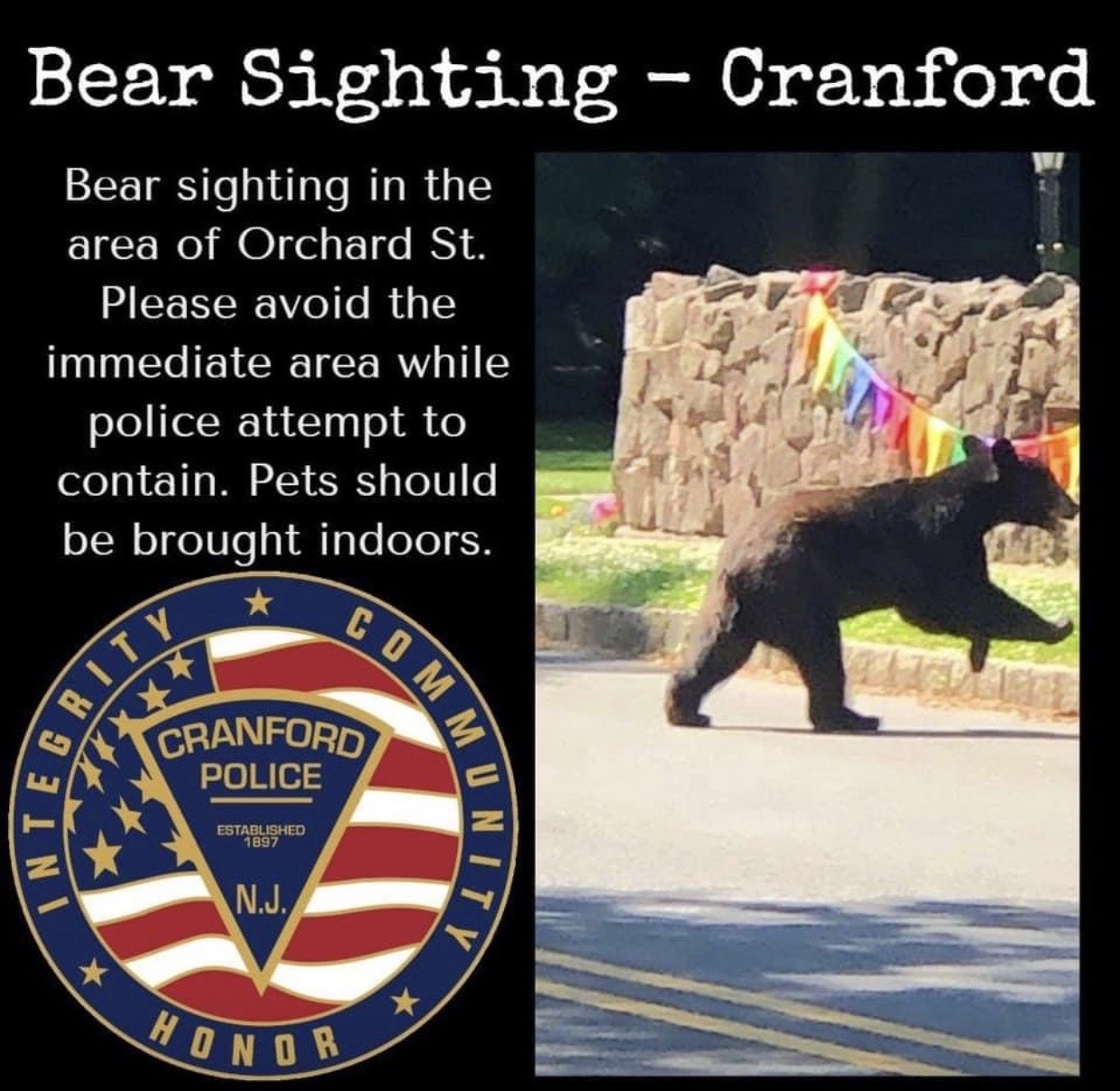 Cranford Police department Bear